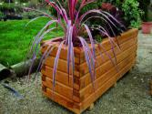 Jardinière Robinier 50 x 180 x hauteur 52 cm